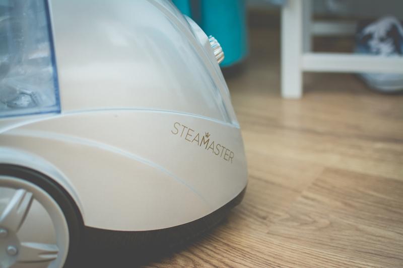 10 SteaMaster