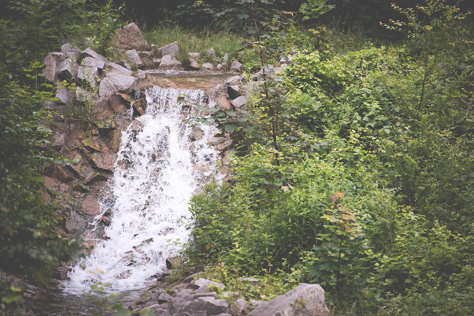 wodospad wroclaw zoo